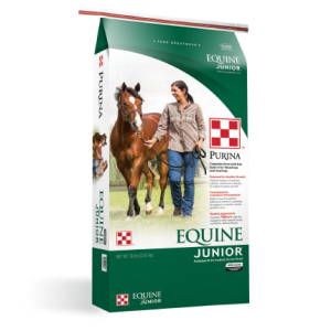 Equine Junior Horse Feed