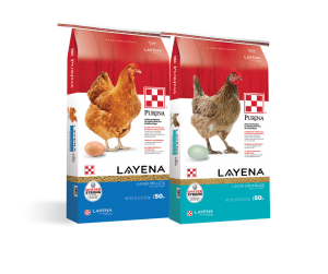 Purina Layena Pellets and Crumbles