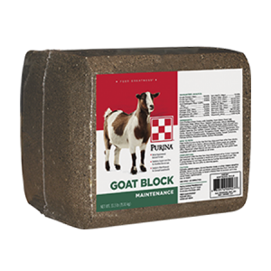 Purina Goat Block